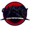 Black Panther Gaming Diamond
