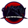 Black Panther Gaming (Hass & Dominanz)